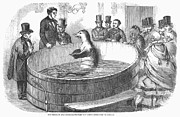London: Talking Fish, 1859 Print by Granger