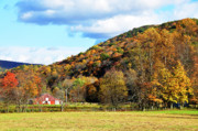 Lone Barn Fall Color Print by Thomas R Fletcher