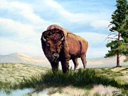 Buffalo Originals - Lone Bull by Charles Sims
