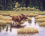 Bull Paintings - Lone Bull by Richard De Wolfe