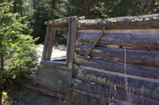Log Cabins Photo Originals - Lone Cabin at Deserted Village by Cynthia  Cox Cottam