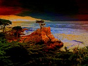 Cypress Tree Digital Art Posters - Lone Cypress Poster by Angela L Walker