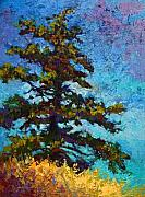 Fall Leaves Painting Framed Prints - Lone Pine II Framed Print by Marion Rose