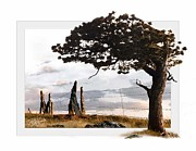 Northern Colorado Digital Art Prints - Lone Pine Print by Patrick Hegarty