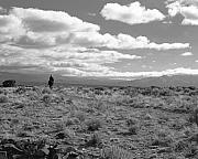Taos Photo Prints - Lone Rider West of Taos Print by Troy Montemayor