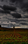 Lightning Strike Photos - Lone Strike by Emily Stauring
