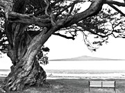 Aged Pyrography Framed Prints - Lone tree Bench and Volcano Framed Print by Yurix Sardinelly