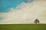 Flock Of Bird Art - Lone Tree by Image by J. Parsons