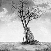 Watercolors - Lone tree on the prairie by Rich Stedman
