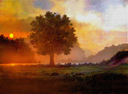 Haze Prints - Lone Tree Print by Robert Foster