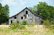 Old Country Roads Photos - Lonely Barn by Lisa Moore