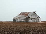 Mnkreations Metal Prints - Lonely Barn Metal Print by Michelle Kelnhofer