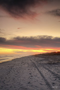 Hilton Head Prints - Lonely Beach Print by Phill  Doherty