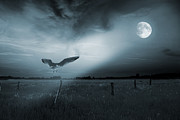 Monochromatic Digital Art Prints - Lonely bird in moonlight  Print by Jaroslaw Grudzinski