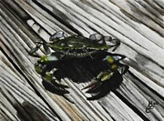 Kim Selig - Lonely Crab