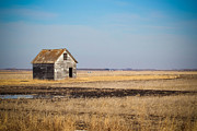 Rural Landscapes Prints - Lonely Ol House Print by Christy Patino