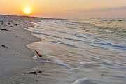 Pensacola Prints - Lonely Shell 2 Print by Richard Roselli