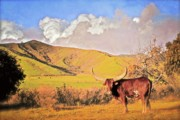 Rural Scenes Digital Art Originals - Lonesome Longhorn Ojai California by Gus McCrea