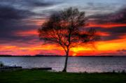 Lonesome Prints - Lonesome Sunset  Print by Kim Shatwell-Irishphotographer