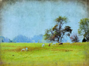 Country Scenes Metal Prints - Long Ago And Far Away Metal Print by Jan Amiss Photography