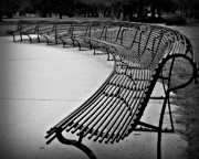 Park Benches Posters - Long Bench Poster by Perry Webster