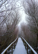 Freezing Prints - Long Bridge Print by Svetlana Sewell