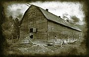 Dairy Barn Framed Prints - Long Byre Framed Print by Wayne Sherriff