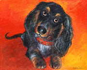 Colorful Photos Drawings Posters - Long haired Dachshund dog puppy Portrait painting Poster by Svetlana Novikova