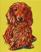 Dachshund Framed Prints - Long Haired Dachshund Framed Print by Nadi Spencer