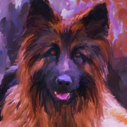 Police Dog Prints - Long Haired German Shepherd - Square Print by Jai Johnson