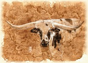 Ranch Drawings Posters - Long Horns Poster by Debra Jones