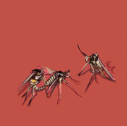 Bugs Paintings - Long-Legged Flies by Jude Labuszewski