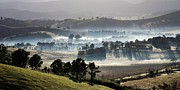 Yarra Valley Prints - Long Shadows Print by Lee Stickels