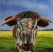 Steer Paintings - Longhorn Calf by Lucy Deane