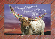 Texas Longhorn Photos - Longhorn Christmas Card from San Antonio by Robert Anschutz