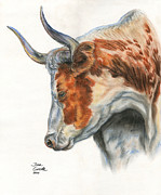 Western Western Art Pastels Framed Prints - Longhorn Framed Print by Jana Goode