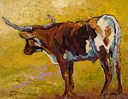 Texas Longhorn Cow Framed Prints - Longhorn Study Framed Print by Marion Rose