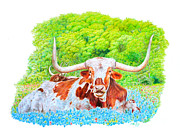 Longhorn Drawings Posters - Longhorns in Bluebonnets Poster by Mike Ivey