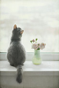 Window Sill Posters - Longing For Spring Poster by Have A Good Day!