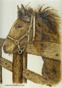 Animals Pyrography - Longing for the Dusty Trail by Nedra  Denison