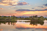 Longs Peak Photos - Longs Peak Evening Sunset View by James Bo Insogna
