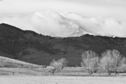 Colorado Posters Prints - Longs Peak Snow Storm BW Print by James Bo Insogna