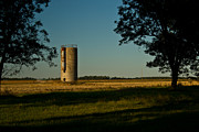 Arkansas Framed Prints - Lonly Silo 5 Framed Print by Douglas Barnett