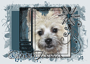 Sequin Digital Art Framed Prints - Look in Her Eyes - Cairn Terrier Framed Print by Renae Frankz
