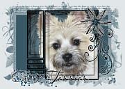Look In Her Eyes - Cairn Terrier Print by Renae Laughner