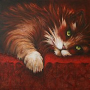 Persian Cat Paintings - Look into my Eyes by Cynthia House
