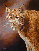 Lynx Painting Posters - Look Straight Ahead- Lynx Poster by Shawn Shea