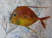 Fish Print Mixed Media Posters - Lookdown 1 Poster by Brenda Alcorn