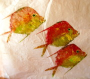 Gyotaku Prints - Lookdowns 2 Print by Brenda Alcorn