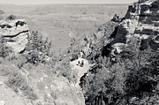 South Kaibab Trail Prints - Looking Down on the South Kaibab Trail BW Print by Julie Niemela